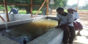 concrete pond for catfish farming in nigeria