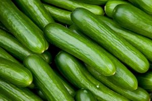 updated cucumber farming business plan in nigeria